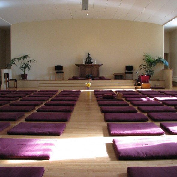 meditation hall | medivate